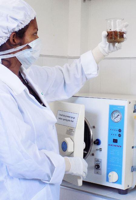 buckaroo barn australia - Rio Coco Test Laboratory